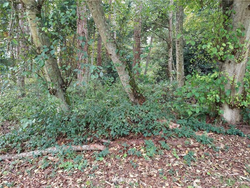 Property View 2
