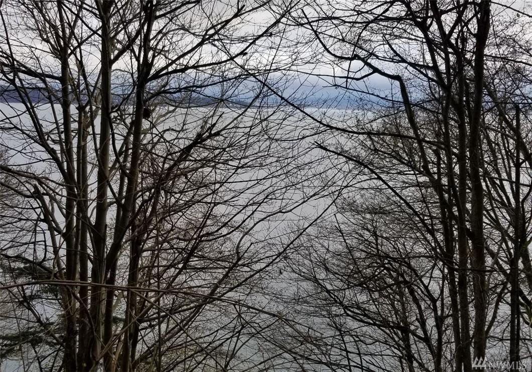 Lot View 2